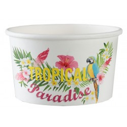 10 ramequins carton tropical paradise