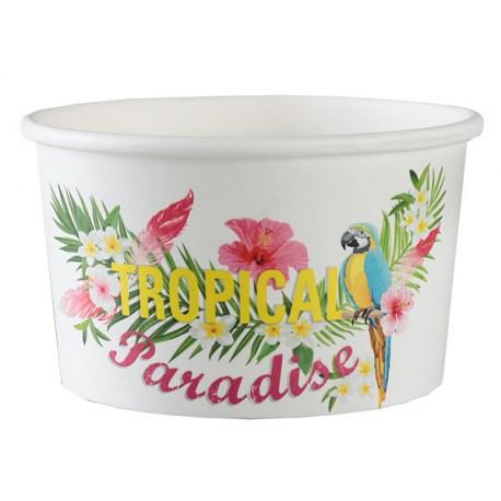 10 ramequins carton tropical paradise